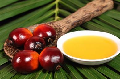 ¿De verdad es tan perjudicial el aceite de palma?